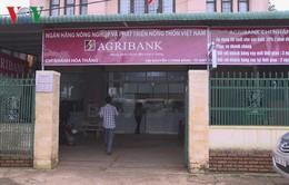 Truy bắt đối tượng nổ súng tại ngân hàng Agribank ở Buôn Ma Thuột