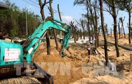 Phú Yên đầu tư hơn 68 tỷ đồng xây tuyến đi bộ ven biển thành phố Tuy Hòa