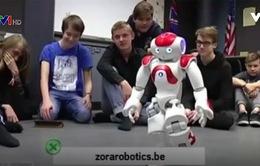 Robot dịch vụ phát triển mạnh mẽ