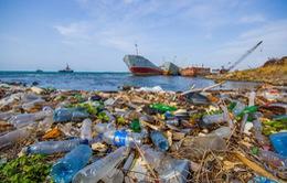 Vùng biển Bắc Cực ô nhiễm nặng vì rác thải nhựa