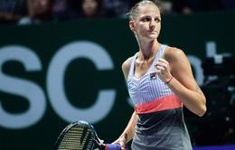 Bảng trắng WTA Finals: Pliskova thắng ấn tượng Venus Williams