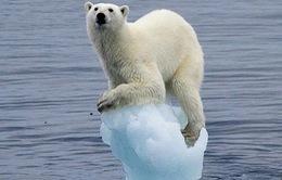 Nhiệt độ trung bình của Trái đất có thể đạt gần 40oC