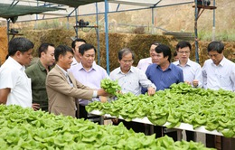 Nông dân đã sẵn sàng với nông nghiệp 4.0