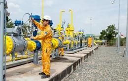 Giá dầu giảm, DN dầu khí chuyển hướng đầu tư ngoài ngành