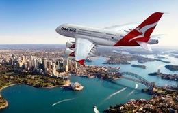 """Qantas Airways gặt hái """"trái ngọt"""" sau khi mạnh tay cải tổ"""