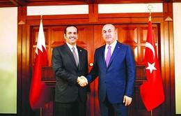 Qatar, Thổ Nhĩ Kỳ tìm giải pháp cho khủng hoảng vùng Vịnh