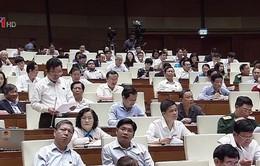 Thảo luận phương án thu hồi đất dự án sân bay Long Thành