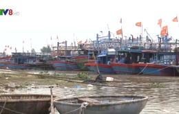 Quảng Nam khẩn trương các biện pháp đối phó bão số 12