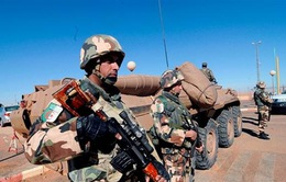 Algeria tiêu diệt 4 phần tử khủng bố nguy hiểm