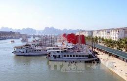 Quảng Ninh đề nghị dừng hoạt động 8 tàu trên vịnh Hạ Long
