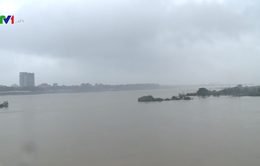 Quảng Ngãi: Ảnh hưởng bão số 12 mưa lớn gây ngập lụt