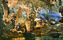 Quảng Bình lọt top 10 điểm đến hấp dẫn nhất Việt Nam