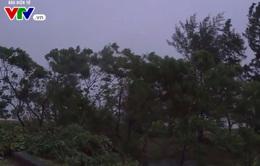 Bão số 10 gây mưa lớn ở các tỉnh Bắc Trung Bộ