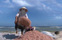 Ngày Tết Độc lập với ngư dân Quảng Trị