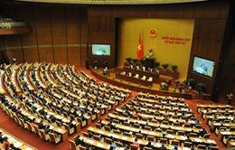 Quốc hội thảo luận về thu hồi đất, tái định cư sân bay Long Thành