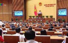 Đề nghị sớm giải phóng mặt bằng sân bay Long Thành