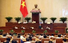 Quốc hội thảo luận về Nghị quyết xử lý nợ xấu