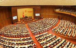 Phiên thảo luận sáng 7/11 tại Kỳ họp thứ 4, Quốc hội khóa XIV được THTT trên VTV2
