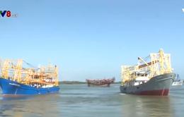 Ngư dân miền Trung đồng loạt vươn khơi