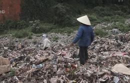 Thanh Hóa: Nỗi khổ của 45 hộ dân suốt 20 năm sống gần bãi rác