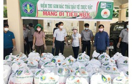 Ninh Thuận tiêu hủy gần 300 kg rác thải thuốc bảo vệ thực vật