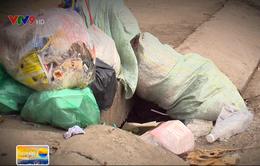 Chậm thu gom rác tại TP.HCM: Nguyên nhân và giải pháp