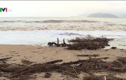 Rác tràn ngập bãi biển Nha Trang