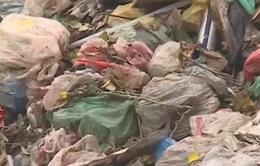 Hà Nội: Phát hiện xe tải chở hàng chục tấn rác đổ trộm ra khu dân cư