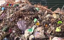 """Khu dân cư thị xã Kỳ Anh, Hà Tĩnh """"ngập"""" rác thải"""
