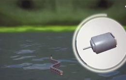 Robot rắn giúp phân tích ô nhiễm nguồn nước
