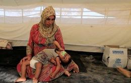 Liên Hợp Quốc kêu gọi ngừng bắn nhân đạo giữa chiến sự ác liệt ở Raqqa