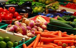 Thúc đẩy tiêu thụ rau, quả chính ngạch sang Trung Quốc