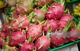 Xuất khẩu rau quả có sự bứt phá mạnh