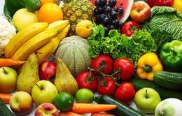 Rau quả tươi giúp phục hồi tổn thương phổi ở người đã cai thuốc