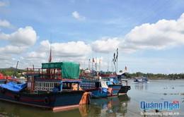Quảng Ngãi: Đường dây điện 22kV gây nguy hiểm cho tàu thuyền