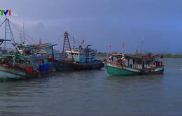 Các tỉnh Nam Trung Bộ chủ động phòng chống thiên tai