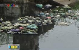 Cà Mau xử lý doanh nghiệp làm rò rỉ nước thải ra môi trường