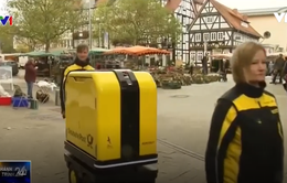 Xe tự động vận chuyển đồ