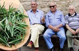 Acciaroli (Italy) - Thị trấn sống thọ nhất thế giới