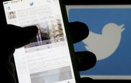 Twitter ra mắt công cụ chống bạo hành qua mạng