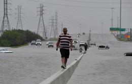 Bãi bỏ lệnh giới nghiêm sau bão Harvey tại Houston, Mỹ