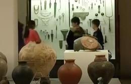 Gruzia tìm thấy chai rượu vang lâu đời nhất thế giới