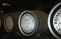 Nghệ thuật nấu rượu whisky tại Nhật Bản