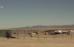 Jordan triển khai thí điểm mô hình trang trại trên sa mạc