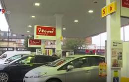 Hãng Shell mở các điểm sạc xe hơi đầu tiên tại Anh