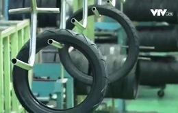 Doanh nghiệp săm lốp tăng sức ép cạnh tranh vì giá cao su