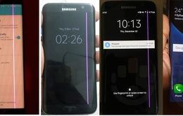 """Samsung thừa nhận lỗi """"đường kẻ màu hồng"""" trên Galaxy S7 edge"""