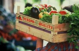 EU áp dụng hệ thống chứng nhận điện tử cho sản phẩm hữu cơ đầu tiên trên thế giới