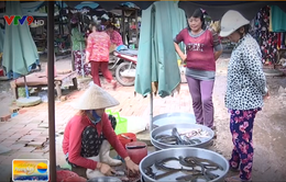 Nâng cấp chợ Long Hải, hàng chục tiểu thương trước nguy cơ không có sạp hàng
