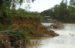 Gia tăng tình trạng mất đất do sạt lở ven sông Cái
